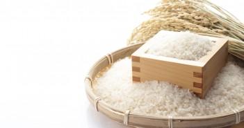 お米 炊飯